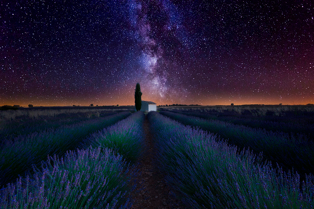 foto Provence - Jan Lambert Photography